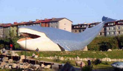 Gdzie można zobaczyć wieloryba? Najlepsze Parki Makiet Zwierząt Morskich w Polsce