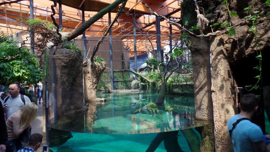 Atrakcje Turystyczne Dla Dzieci Ogród Zoologiczny We